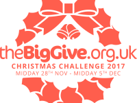 The Big Give 2017