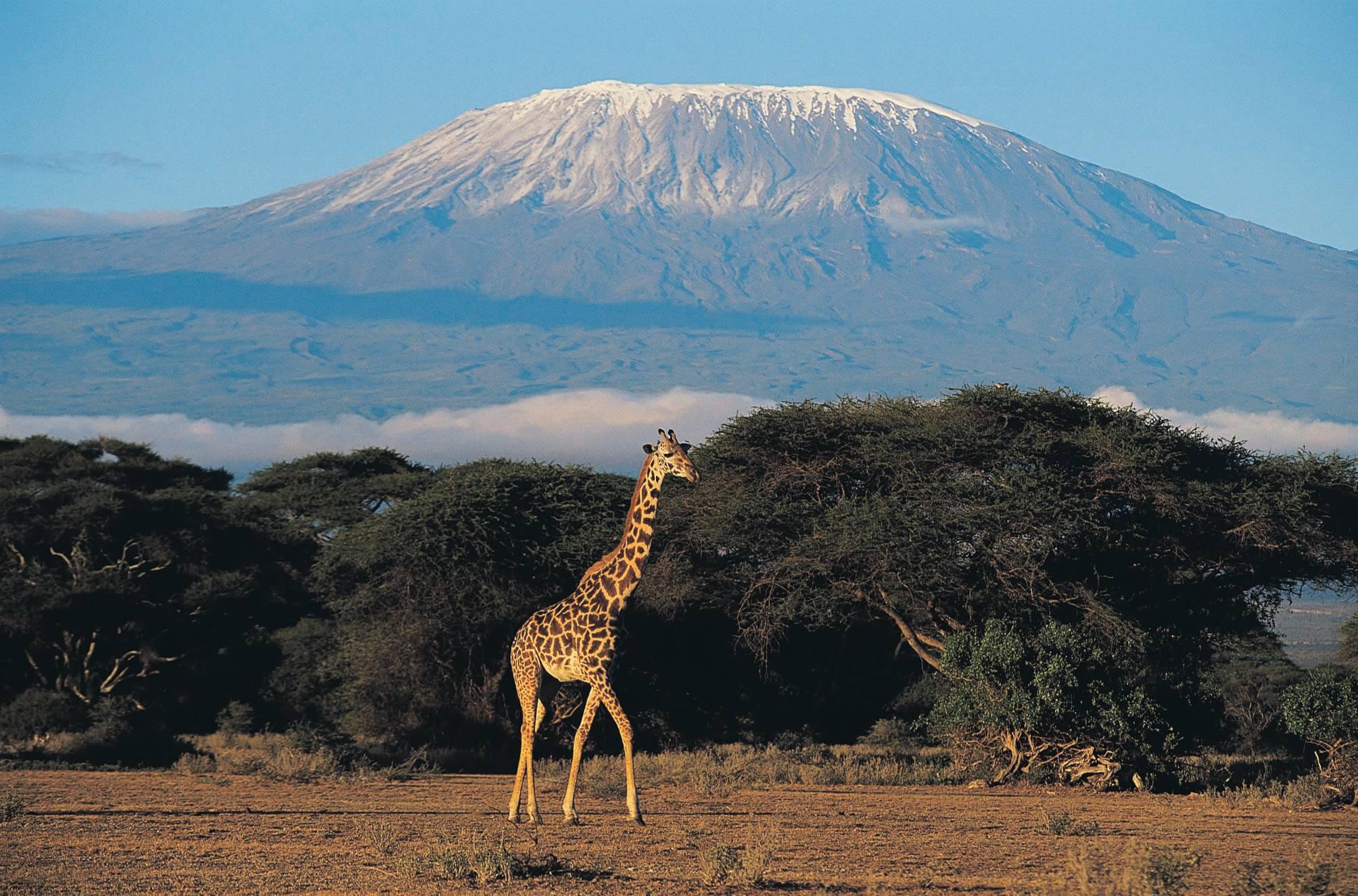 Kilimanjaro Trek 2017